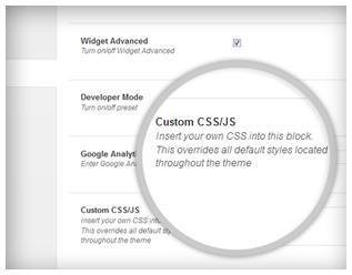 Custom CSS/JS
